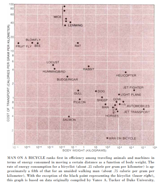 Chart from Scientific American, 1973